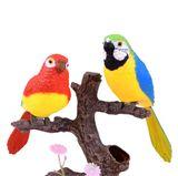 Papagáje na strome