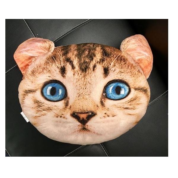 Stiahnite si zdarma túto fotografiu o Mačka Mačička Trikolóra z Pixabay knižnice public domain obrázkov a videí.