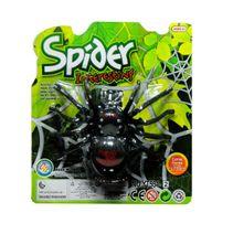 Pavúk na zotrvačník