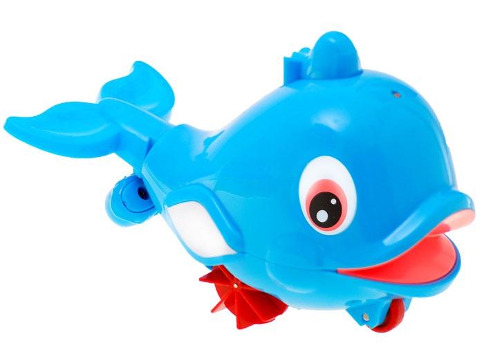 Veľryba do vody